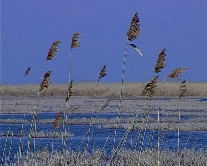 Целебное озеро Кизил-Яр 002_0001